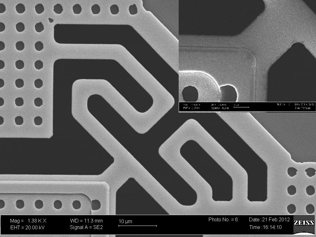 Microscopia foto 8